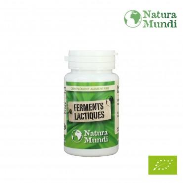 Ferments Lactiques - Probiotiques