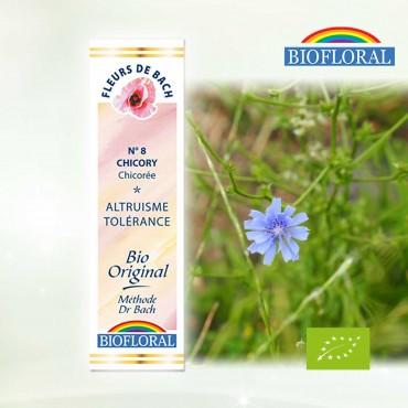 N°08 Chicorée / Chicory Fleur de Bach