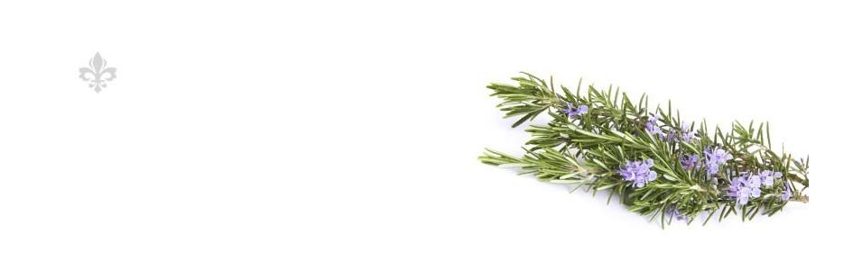 Plantes en vrac R