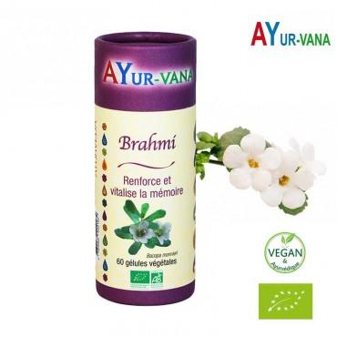 Brahmi Bio - Mémoire