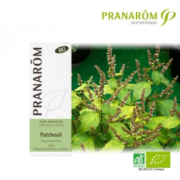 Patchouli huile essentielle Bio
