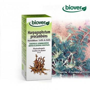 Teinture-mère de Harpagothytum bio