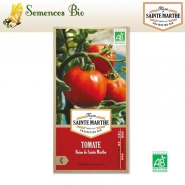 Tomate Reine de Sainte Marthe - semences bio