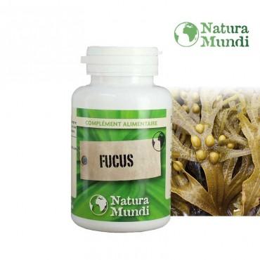 Fucus Bio