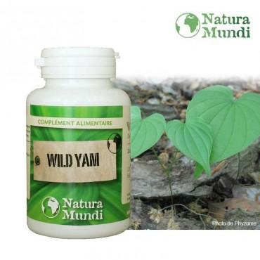 Wild Yam - ménopause