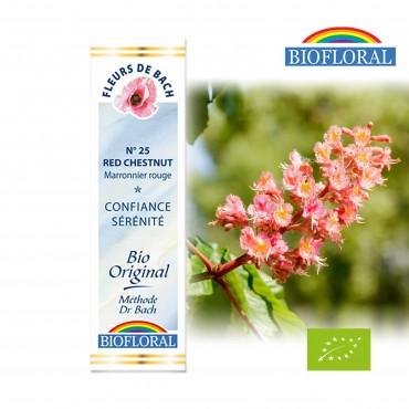 N°25 - Marronnier Rouge / Red Chestnut Fleur de Bach