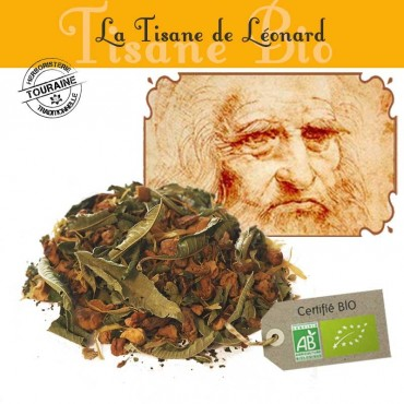 Tisane de Léonard bio - Orange