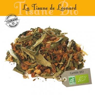 Tisane de Léonard bio - Orange