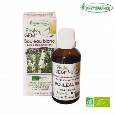 Macérat de bourgeons Bouleau blanc bio - 40 ml