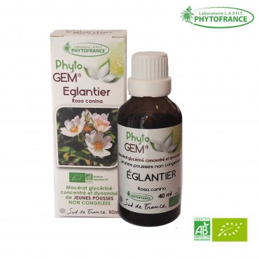 Macérat de bourgeons d'Eglantier bio - 40 ml