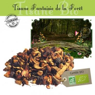 Fantaisie de la forêt Bio - Fruits & menthe douce