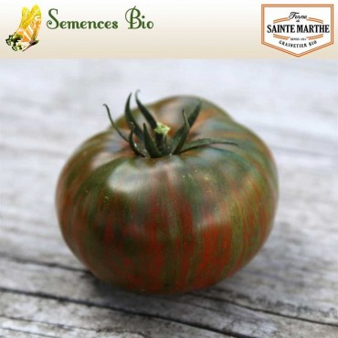 Tomate Chocolate Stripes - semences bio