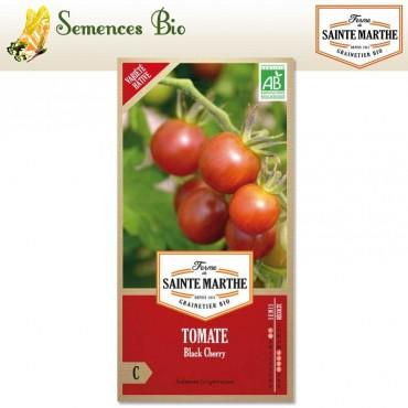 Tomate Black Cherry - semences bio