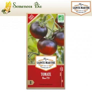 Tomate Bleue P20 - semences bio