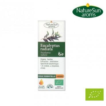 Eucalyptus radiata huile essentielle Bio