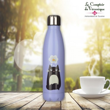 Bouteille Inox Isotherme -...