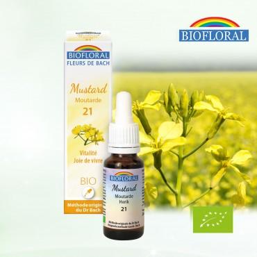 N°21 Moutarde / Mustard...