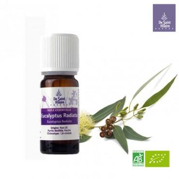 Eucalyptus radié huile...