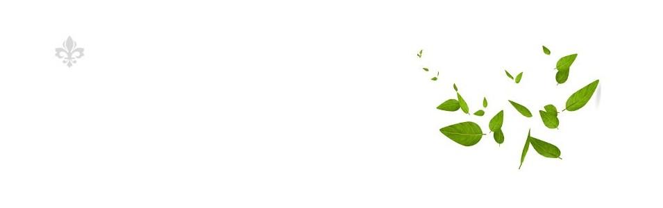 Plantes en vrac D