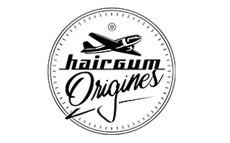 Haigum Origins